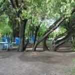 Parque Amsa Calafate Santacruz Argentina Camping El Santa Cruz